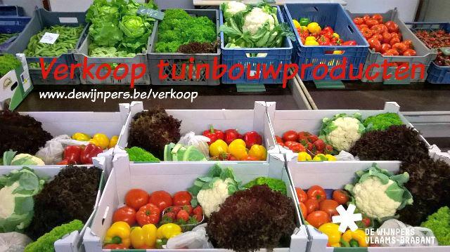 20150923_verkoop tuinbouw groenten_logo_web.jpg